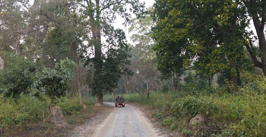 Jim Corbett National Park : Where Adventure Never Ends
